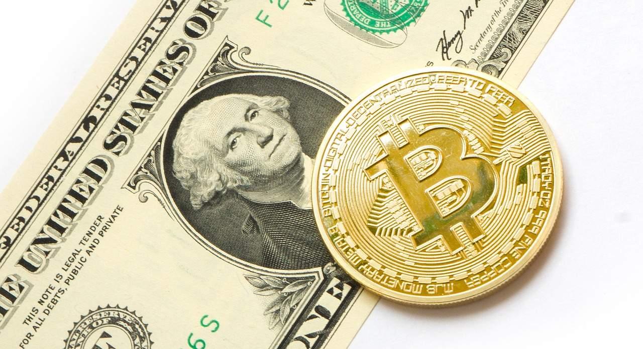 Bullish für Bitcoin- Stablecoins grünes Licht