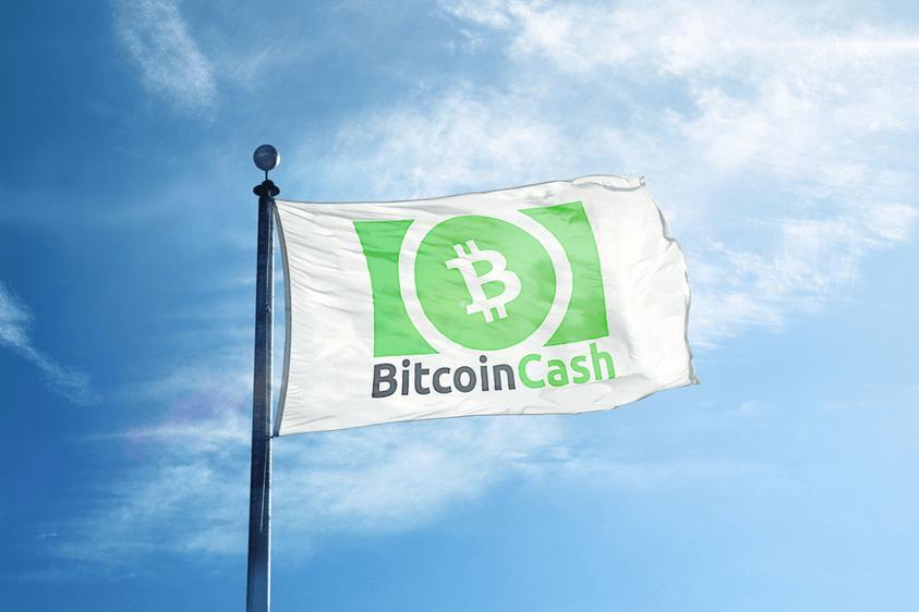 US-Gerichte weisen Manipulationsvorwürfe gegen Bitcoin Cash zurück