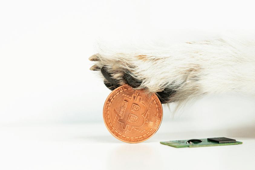 Update Dogecoin boomt, Ethereum ATH, Bitcoin Dip & Coinbase Aktie