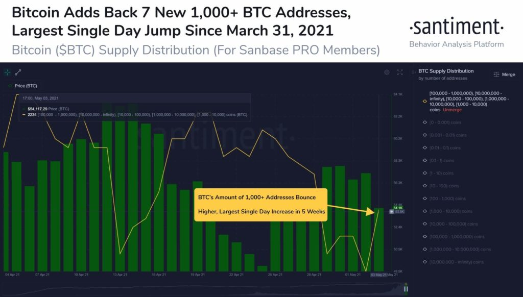 santiment Wal-Update Bitcoin