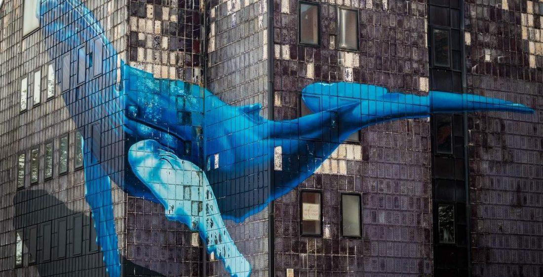 Bitcoin-Wale akkumulieren BTC für 108 Millionen Dollar